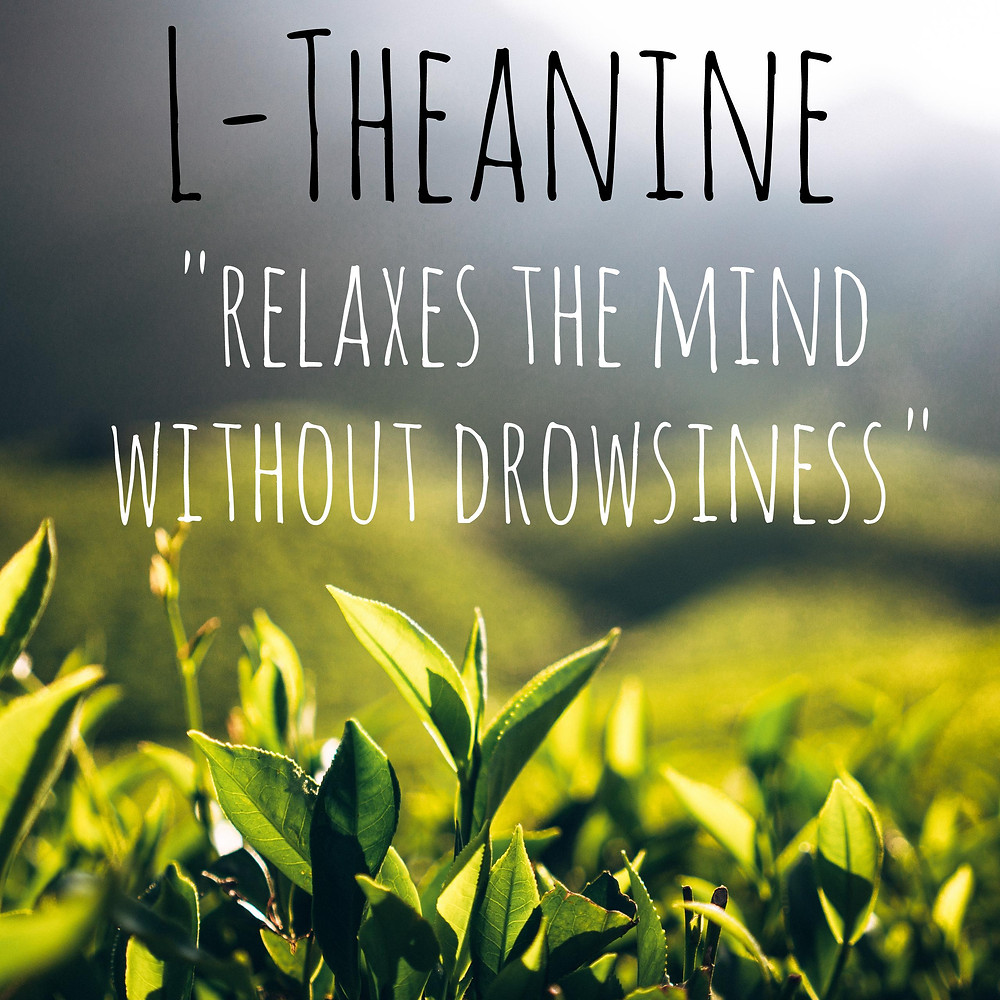 L-Theanine - Relaxes the mind without drowsiness