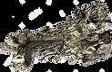9999-fine-scandium-isolated-on-white-bac