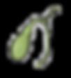 human-gallbladder-icon-in-cartoon-style-