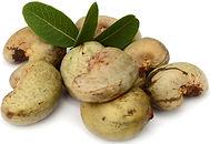 cashew nuts _edited.jpg