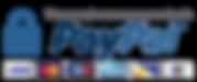 paypal-cards-logo-hostnamaste.png