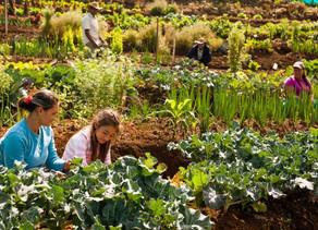 Se entrega el premio más importante de ecología en Colombia