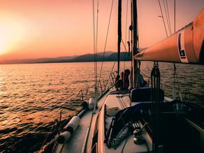 Sail Insight: crean app móvil gratuita para la comunidad de navegación a vela
