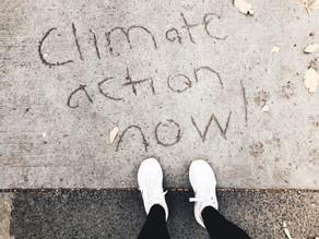 El impacto de la pandemia en el medio ambiente: lo que crees y lo que no es