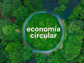 Organizaciones líderes en América Latina  forman nueva coalición regional de economía circular