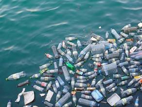 Nuevo informe pide que el 100% de los plásticos usados en el mundo sean reutilizables