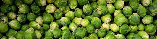 veggies 3.jpg