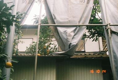 11-07 SAMURAI(SUPERIA X-TRA400)1-60.jpg