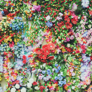 flowers_blue_red_orange_green_colors_yel