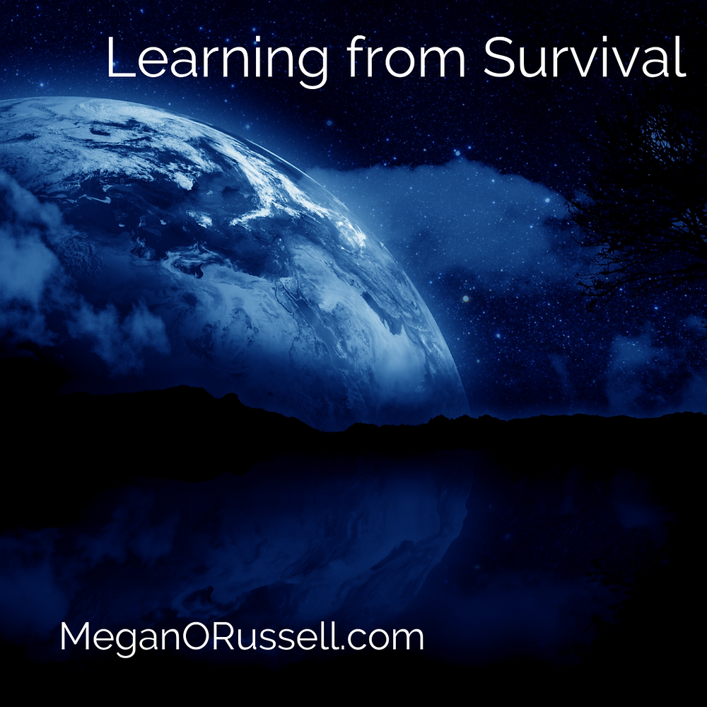 Learning from Survival