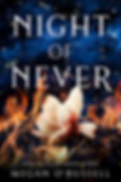 Night of Never.jpg