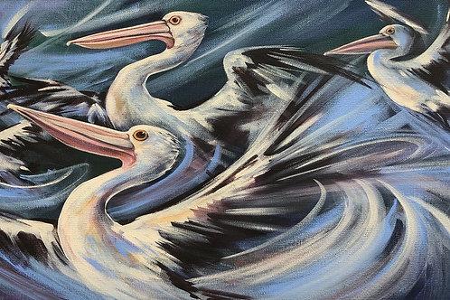 Pelican Pod