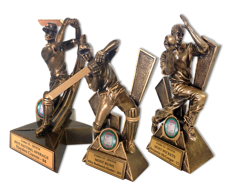 Ormeau Cricket - Group Shot.jpg