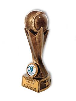 Beenleigh Hawks Baseball - Senior Player of the Year.jpg
