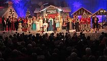 Weihnacht der Stars Armin Stöckl