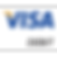 Debit Visa2.png