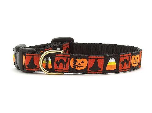 "Halloween Cat Collar, 10"" or 12"""