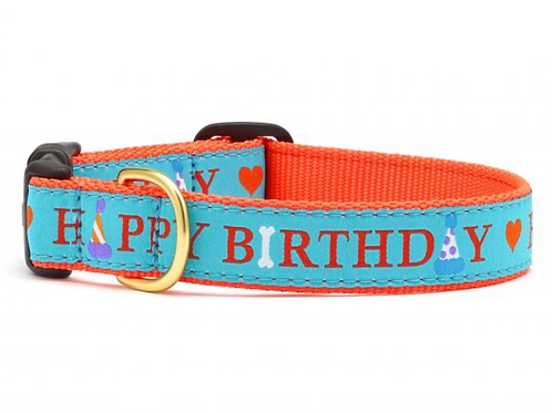 Birthday Dog Collar, S