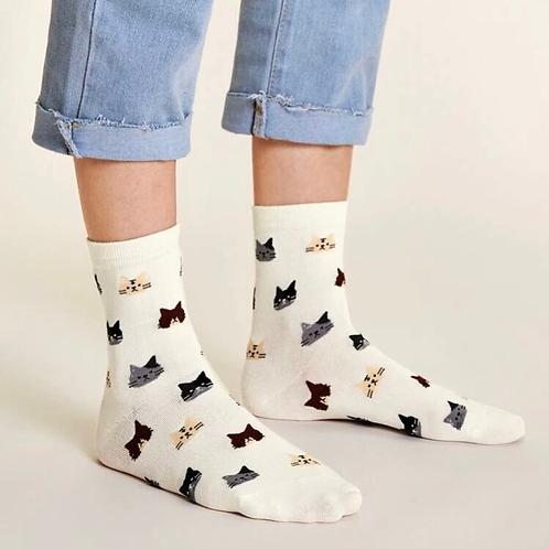 Cats 🐱 Socks