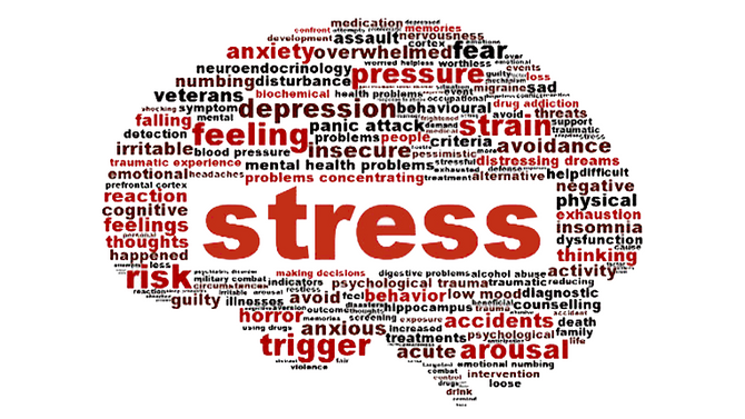 5 EASY ways to manage your stress