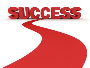 The Curvy Road to Success
