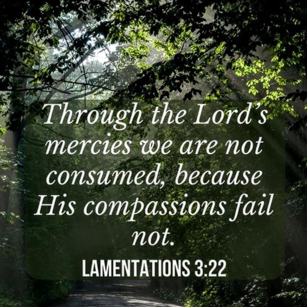 Image - Through the Lord's mercies.JPG