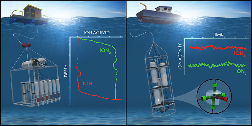 Environmental analysis in situ with submersible devices