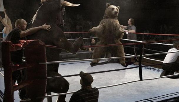 Touro x Urso