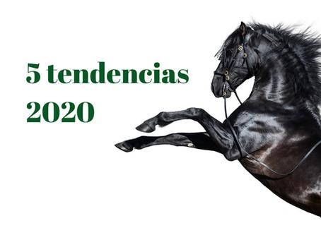 5 Tendencias del mundo ecuestre en el 2020