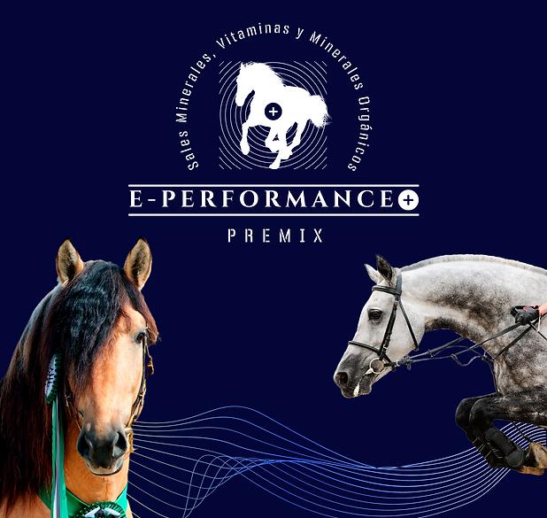 e-performance-4.png