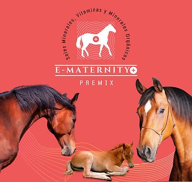 Suplemento caballos crianza