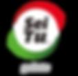 Logo Seitu-01.png