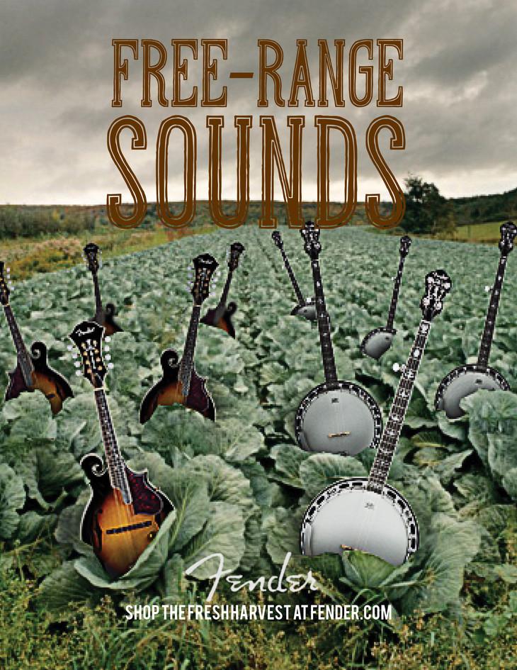 Fender   Free Range Sounds - Ad