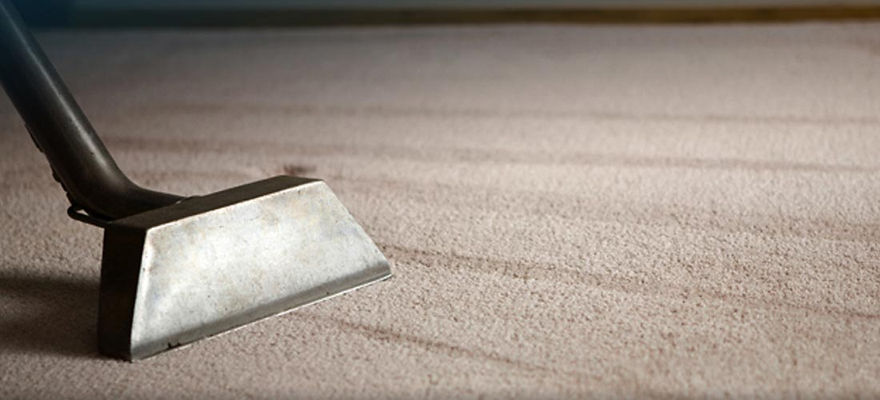 cleaning services Carpet Cleaning Dunedin