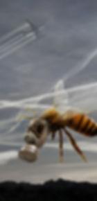 Gas Mask Bee5.jpg
