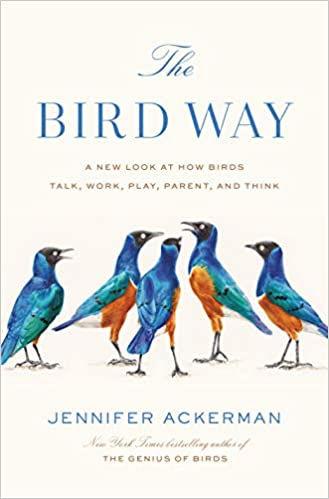 BirdWay.jpg