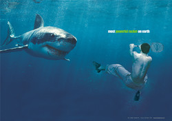 배드민턴상어광고