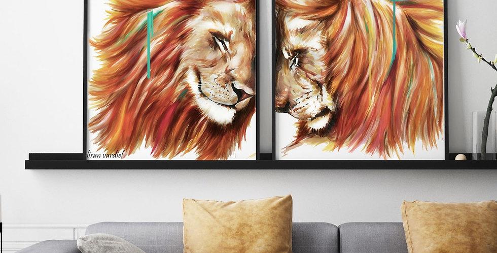 זוג אריות
