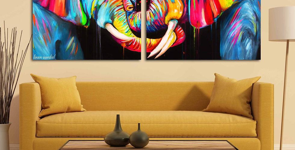 זוג פילים צבעוניים
