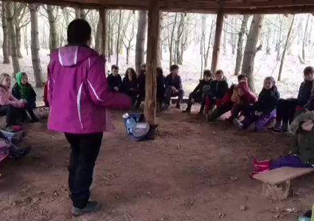 Class 4 Trip to Bishops Wood