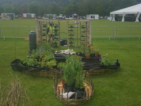 School Garden Update