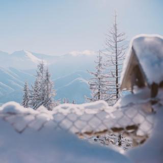 Snowy Scene PC JJMT Photography_-6.jpg