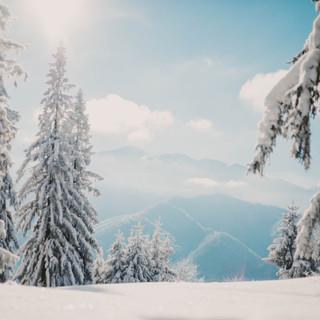 Snowy Scene PC JJMT Photography_-9.jpg