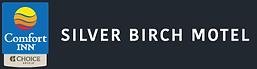 Silver Birch.png