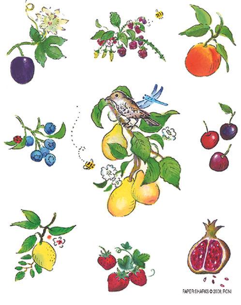 RS113  Fruits Apron