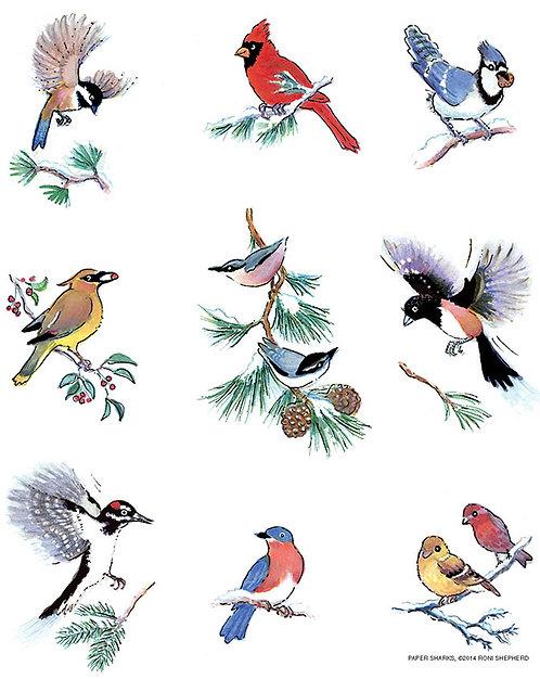 RS490  Snow Birds Apron