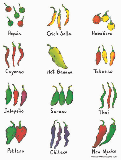 RS129  Chiles on the Vine Apron