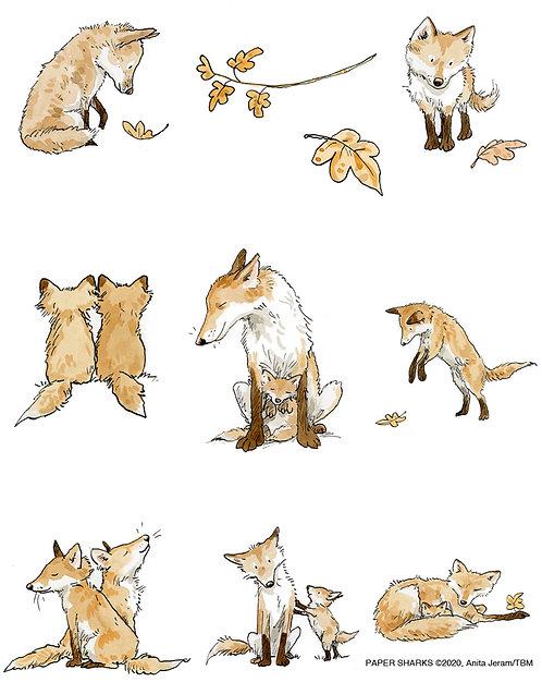 AJ527 Foxes
