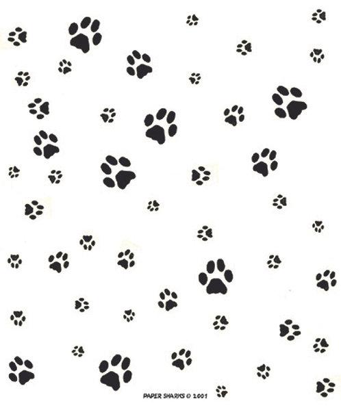 PS101  Cat Paw Prints