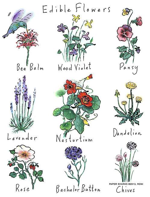 RS141  Edible Flowers